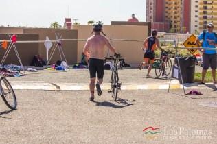 Triathlon 2017 21