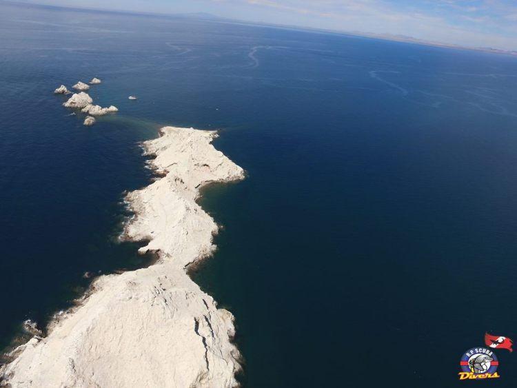 rp-divers-bird-island Memorable! Rocky Point Weekend Rundown!