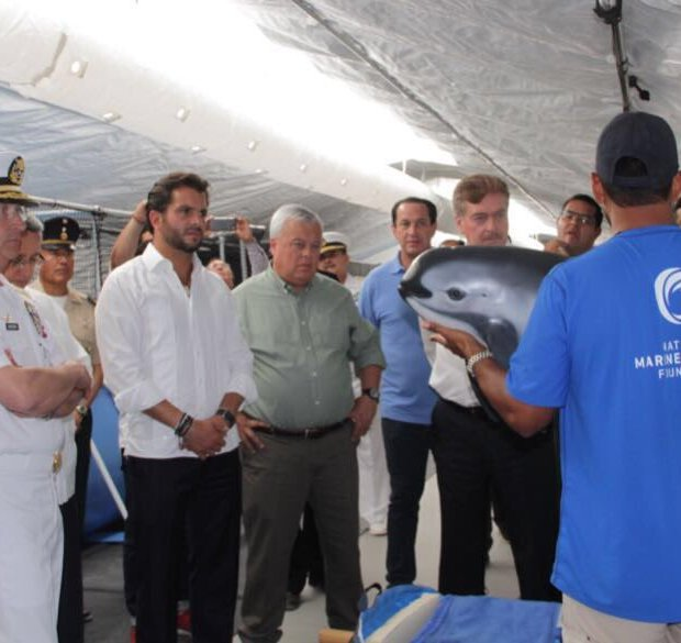 semarnat-vaquita-estacion-3 Dolphin Vaquita Rescue Plan Goes into Action