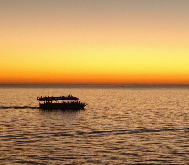 ecofun-cruise AMOR! Valentine's Day 2019 in Puerto Peñasco