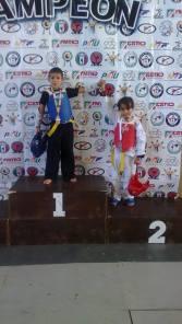 taekwondo-preestatal11