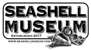 seashell-museum-2018-1200x660 Let's get Funky! Rocky Point Weekend Rundown!