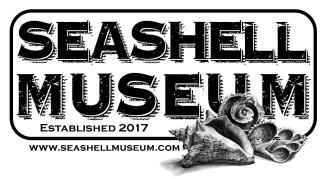 seashell-museum-2018-1200x660 Derby, Music, Art & Golf! Rocky Point Weekend Rundown!