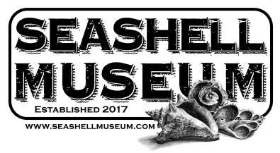 seashell-museum-2018-1200x660 Spring on! Rocky Point Weekend Rundown!