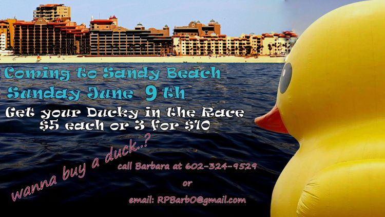 Rubber-Duckie-Race-19-1200x675 Memorable! Rocky Point Weekend Rundown!