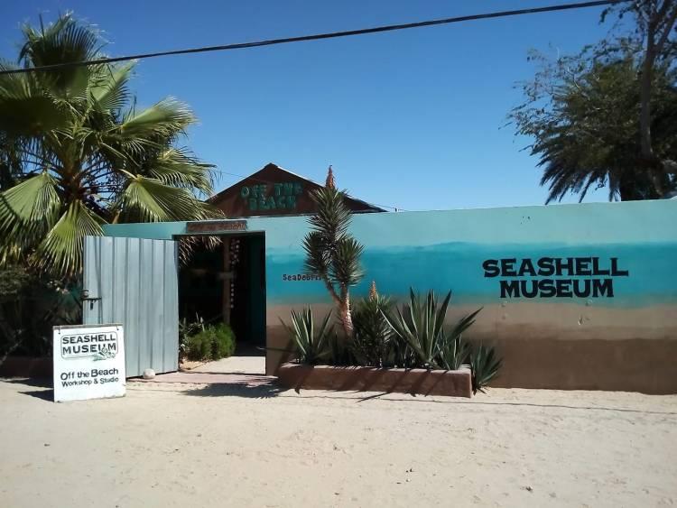 SeaShell-Museum-19 The (Friday) SeaShell Muesum's New Season Re-opening