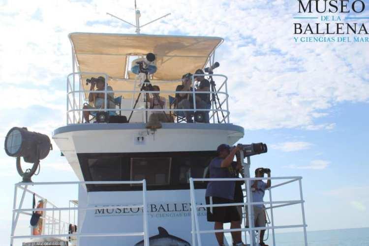 museo-de-la-ballena-ship Summer sighting of 6 Vaquitas reported in Upper Gulf of California