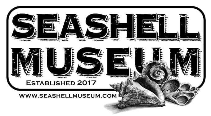 seashell-museum-2019 Friday Seashell Museum