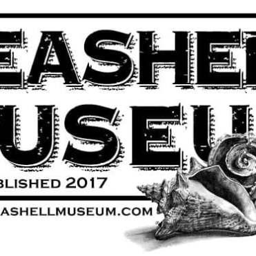 seashell-museum-2019 Fins up! Rocky Point Weekend Rundown!