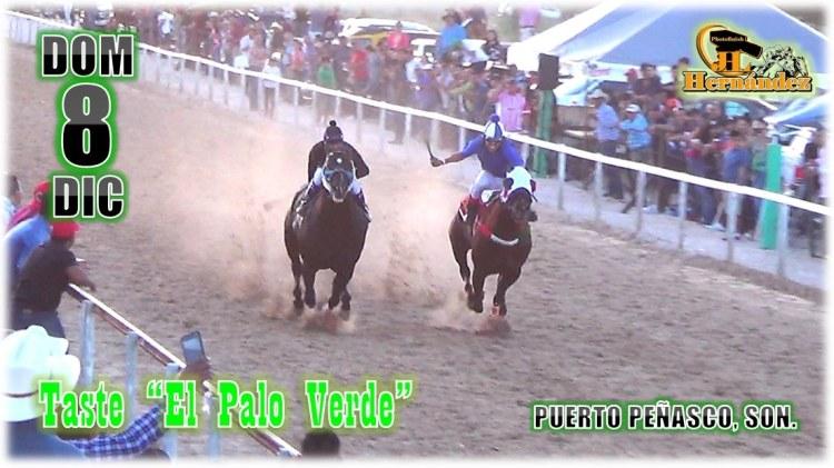 """El-Taste-Palo-Verde-Dic-19 Taste """"El Palo Verde"""" Carreras de Caballos"""