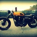 Harley Davidson Sporty 883 Cafe Racer Return Of The Cafe Racers