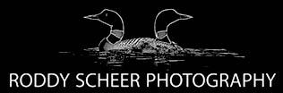 Roddy Scheer Photography