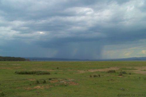 Lake Nakuru National Park (174)