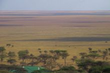 Serengeti National Park (254)
