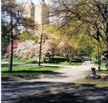 Central Park 18