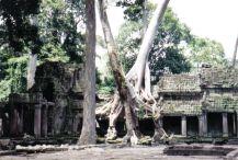 Preah Khan 05