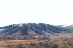 Blyde River Canyon 19