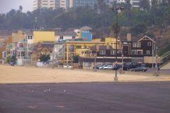 Santa Monica Beach (6)