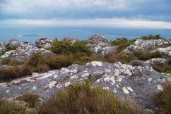 Tafelberg 17
