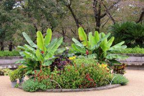 botanical-garden-78