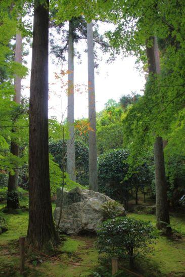 ryoan-ji-temple-20