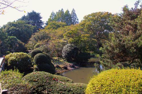shinjuku-gyoen-garden-76