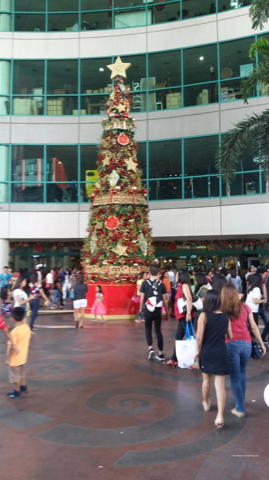 RodFleming_Philippines-2016_001
