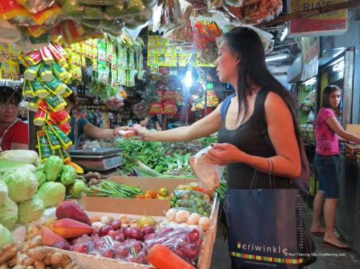 RodFleming_Philippines-2016_031