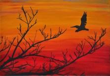 Pelican sunset Sarasota swamp Oil Painting Silhouette