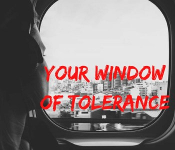 window of tolerance, stephen rodgers counseling, counselor in denver, mens counseling, counseling for men, psychology for men