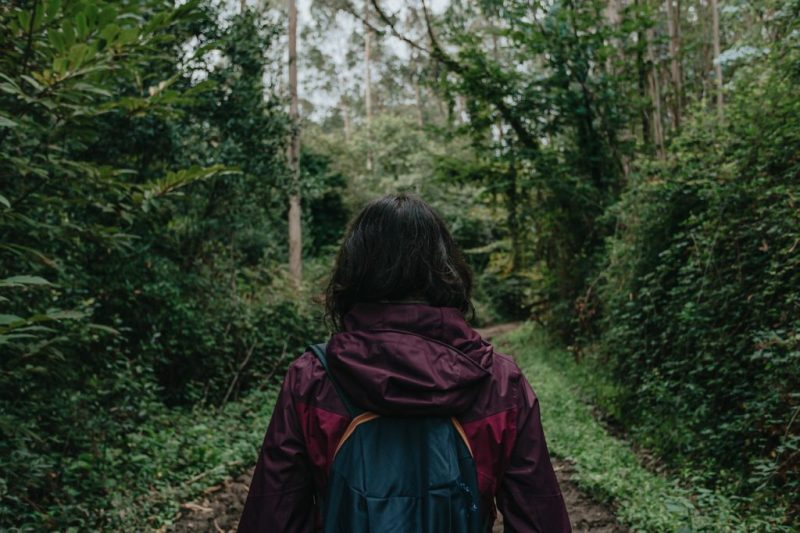 Woman Forest Hiking Girl Person - AveCalvar / Pixabay