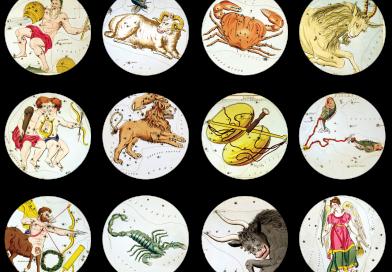 Zodiac Signs Symbols Zodiac Signs  - terski / Pixabay