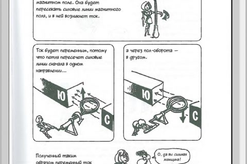 Ларри Гоник, Арт Хаффман. Физика. Естественная наука в комиксах (страница 4)