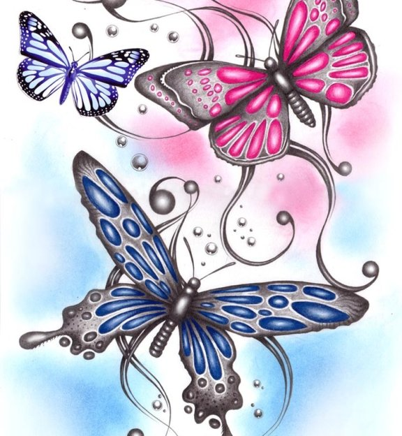 leptiri