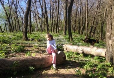 foto_danica_markovic_2-skracena