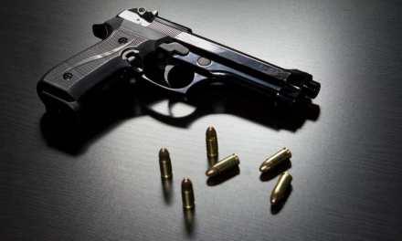 Dems Are Common Sense-Free On Gun-Free Zones
