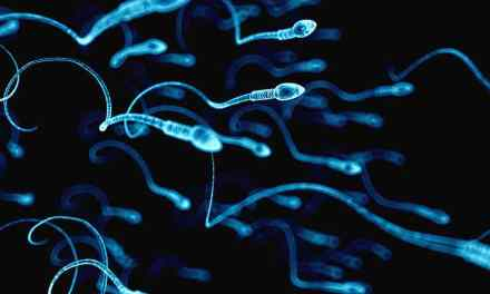 Falling Sperm Counts Could Wreck Your Retirement