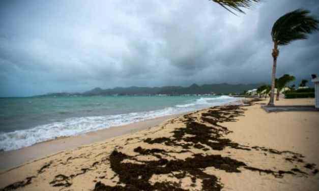 U.S. Virgin Islands Politician Uses Hurricane To Order Gun Confiscation