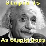 albert einstein stupidity