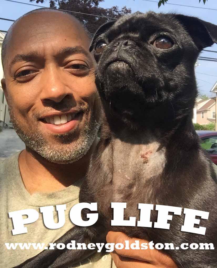 rodney goldston pug life