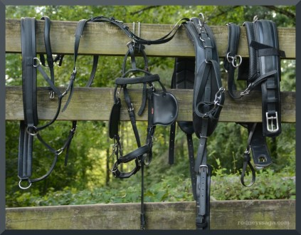 New Equipment: Zilco Harness