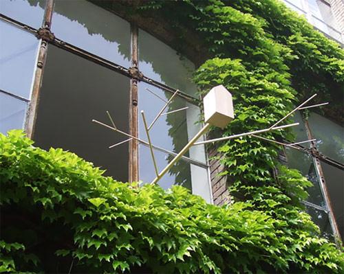 9809890 04298aa2b1 o Casa de passarinho para fora da janela