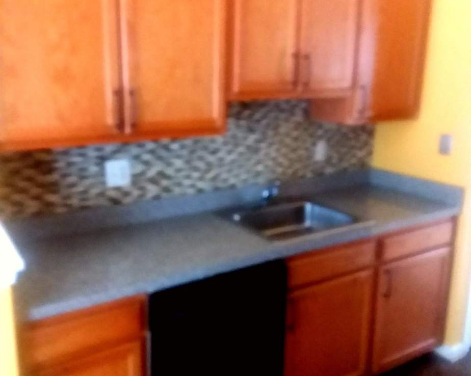 1602 SHADY GLEN DRIVE, DISTRICT HEIGHTS, MD 20747 Galley Kitchen Cabinets Sink and Dishwasher