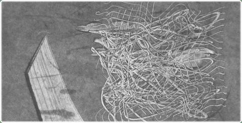 Monoprint-Series-Category-Image
