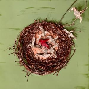 Nest of Secrets