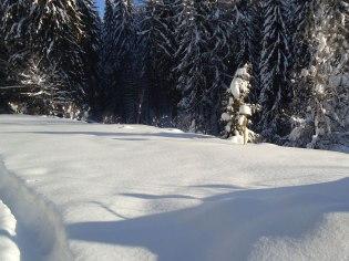 Winterlandschaft 8