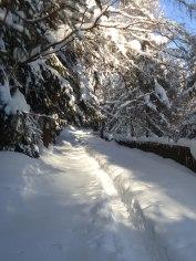 Winterlandschaft 9