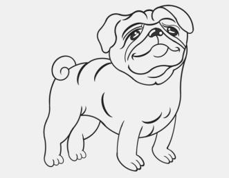 Hund_Mops