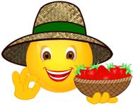 Smiley_Erdbeeren