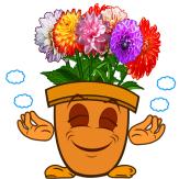 Blumentopf_mit_Dahlien